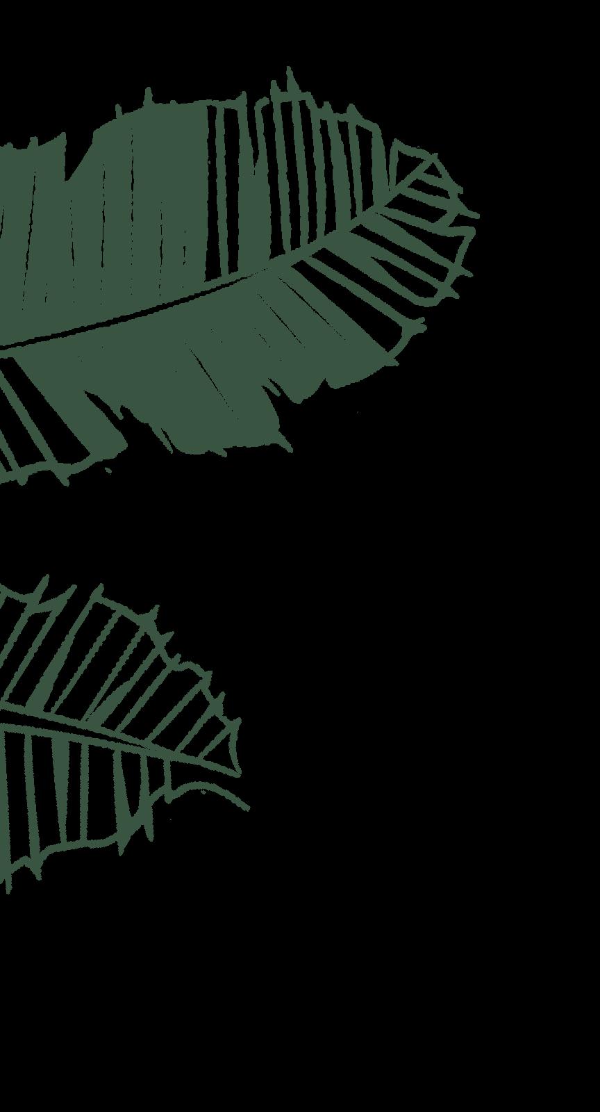 Leaves01 (1)